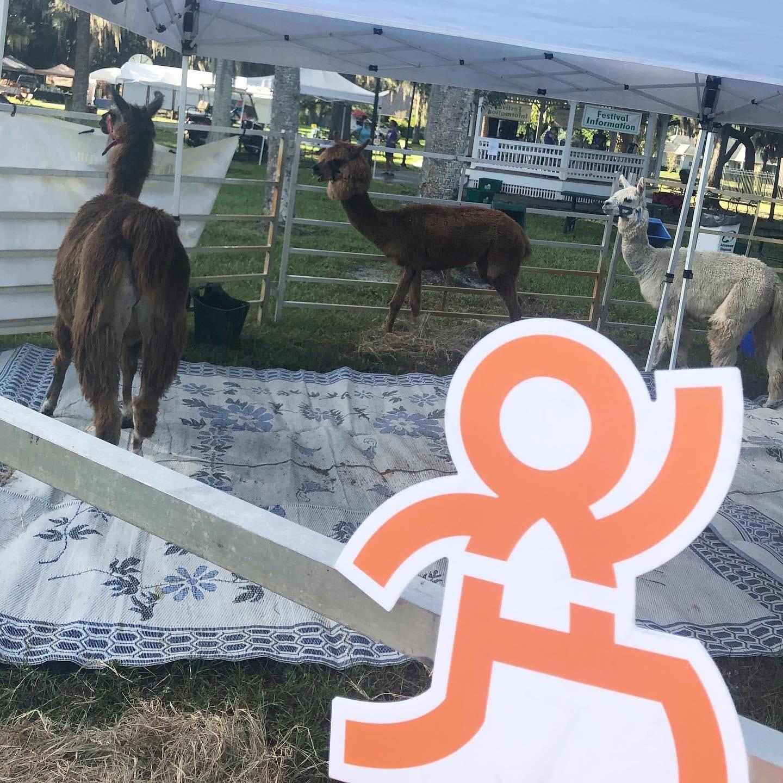Westly cutout with llamas